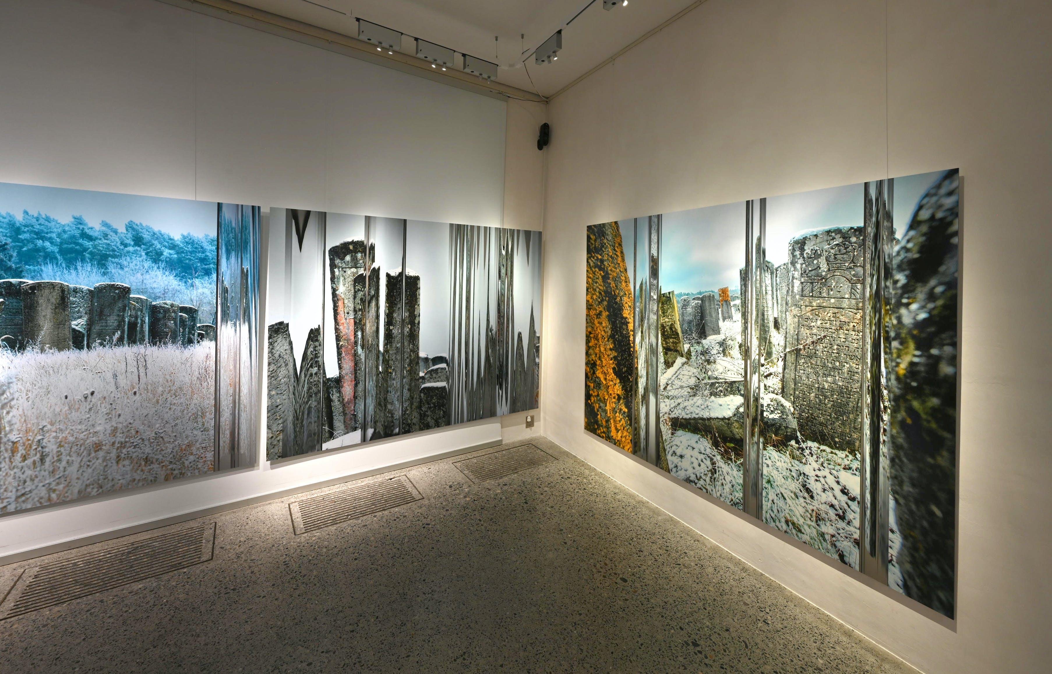 Distanz Ausstellung 5