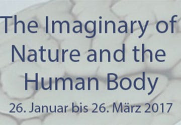 Human Body crop